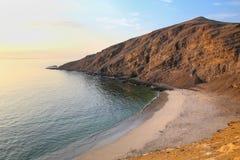 La Mina Beach i Paracas den nationella reserven, Peru royaltyfri fotografi