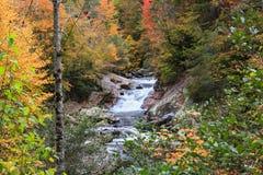 La mina cae Carolina Autumn del norte imagen de archivo