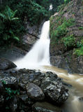 La Mina falls Royalty Free Stock Images
