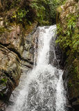 La Mina Falls nella foresta pluviale del cittadino di EL Yunque Fotografie Stock