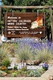 La mina y el molino de oro de Argo en Colorado Fotos de archivo libres de regalías