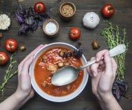 La minestra appena preparato del pomodoro con basilico, aglio e cipolla, timo e condimenti, in un piatto bianco, ragazza ha scava fotografia stock