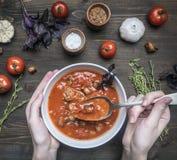La minestra appena preparato del pomodoro con basilico, aglio e cipolla, timo e condimenti, in un piatto bianco, ragazza ha scava immagini stock libere da diritti