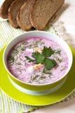 La minestra con le barbabietole fresche ha servito il freddo con panna acida Immagine Stock