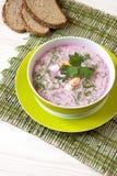 La minestra con le barbabietole fresche ha servito il freddo con panna acida Fotografie Stock