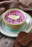 La minestra con le barbabietole fresche ha servito il freddo con panna acida Fotografia Stock