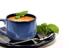Basilico della minestra del pomodoro immagine stock