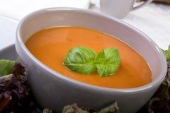 La minestra del pomodoro con basilico guarnisce Fotografie Stock Libere da Diritti