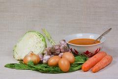 La minestra, l'uovo e la verdura fresca Immagine Stock Libera da Diritti