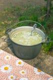 La minestra nel vaso Fotografia Stock Libera da Diritti