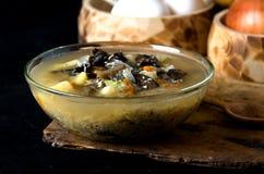 La minestra si espande rapidamente funghi della ciotola di vetro Immagini Stock Libere da Diritti