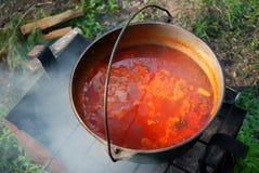 La minestra ucraina (BORSH) ha cucinato su un fuoco aperto Fotografia Stock
