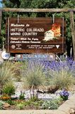 La miniera d'oro ed il mulino di Argo in Colorado Fotografie Stock Libere da Diritti