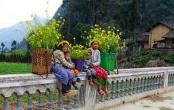 La minorité ethnique non identifiée badine avec des paniers de fleur de graine de colza dans Hagiang, Vietnam Image libre de droits