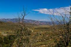 La mirada posee en terreno y camino y los moutains rocosos montañosos en la distancia en las montañas de Idaho Imagenes de archivo