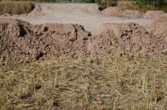 La mise en valeur de sol met en place après la préparation de récolte pour le const Image libre de droits