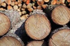 La moisson du bois dans la forêt les rondins sciés se situent dans le tas de bois Chauffage des lieux dans le village Déboisement photos stock