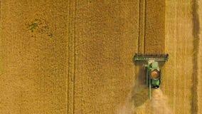 La moissonneuse de cartel de vue supérieure recueille le blé au coucher du soleil Moisson du champ de grain, saison de culture clips vidéos