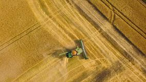 La moissonneuse de cartel de vue supérieure recueille le blé au coucher du soleil Moisson du champ de grain, saison de culture banque de vidéos