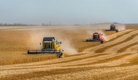 La moissonneuse de cartel enlève des champs de blé images libres de droits