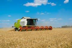 La moissonneuse de cartel fonctionne au champ de blé, Russie image stock