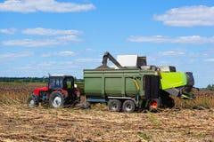 La moissonneuse de cartel surcharge des graines de tournesol dans une remorque de tracteur rouge sur le champ un jour lumineux et Images libres de droits