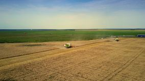 La moissonneuse de vue aérienne fonctionne dans le domaine de blé au pré clips vidéos