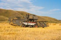 La moissonneuse enlève la culture mûrie de blé sur le champ Image stock