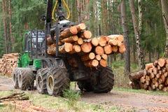La moissonneuse fonctionnant dans une forêt Image stock