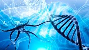 la molécula de la DNA 3d consiste en derrumbarse de partículas móviles Mutación genética y virus de lucha Ciencia y concepto del  fotos de archivo libres de regalías