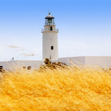 La Mola lighthouse in formentera with golden grass Stock Photography