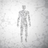 La molecola astratta ha basato la figura umana concetto illustrazione di stock