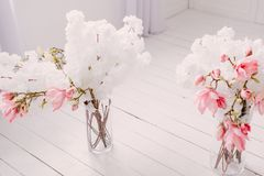 La molla bianca fiorisce nell'interno dell'annata della casa immagini stock libere da diritti