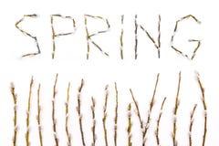 La molla di parola presentata dai gambi dell'albero Rami di fioritura del salice L'approccio della molla immagini stock libere da diritti