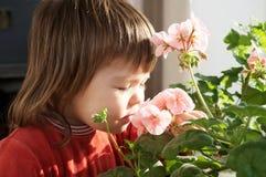 La molla odorante della bambina fiorisce, felicità di sensibilità del bambino, gente allegra senza allergia della molla Fotografia Stock