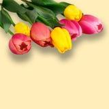 La molla variopinta fiorisce i tulipani del mazzo Immagini Stock
