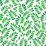 La molla verde lascia il modello senza cuciture su bianco, vettore Fotografia Stock