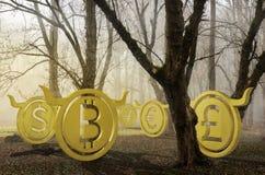 La moneda disparatada perdió en el ejemplo de niebla del bosque 3d foto de archivo libre de regalías