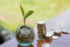 La moneda en la botella de cristal con la pila del dinero intensifica el dinero creciente del ahorro del crecimiento, inversión e imagenes de archivo