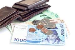 La moneda surcoreana de diverso valor cerca de la cartera, ahorra su concepto del dinero, Imagen de archivo libre de regalías