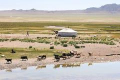 La Mongolia Fotografie Stock
