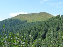La montaña de papa Ivan Marmaros Imágenes de archivo libres de regalías