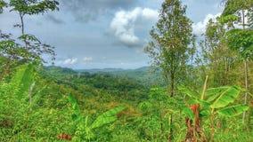La montaña es muy hermosa y fresca foto de archivo