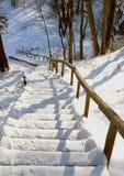 La montaña escarpada de la barandilla de las escaleras cubrió invierno de la nieve Fotos de archivo