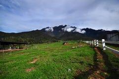 La montaña más alta en Asia sudoriental, el Monte Kinabalu fotografía de archivo