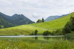 La montaña y el valle verdes ajardinan en las montañas con los caminantes Foto de archivo