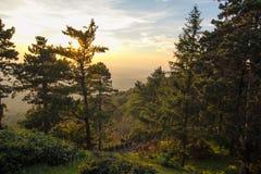 La montagna Avala in Serbia Immagine Stock Libera da Diritti