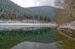 La montagna boscosa invernale riflette in un'acqua di un lago Fotografia Stock Libera da Diritti