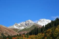 La montagna con neve nel paesaggio di autunno con la foresta variopinta Fotografie Stock