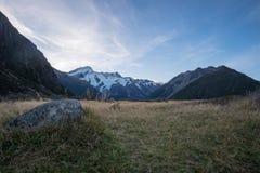 La montagna della neve di estate ha un prato marrone Fotografia Stock Libera da Diritti